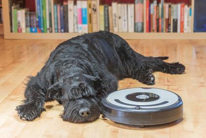 aspirateur robot poil de chien
