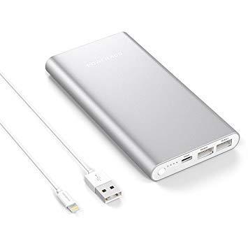 batterie externe ipad mini