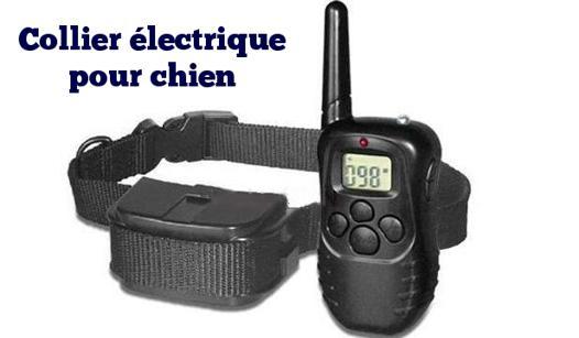 collier pour chien electrique