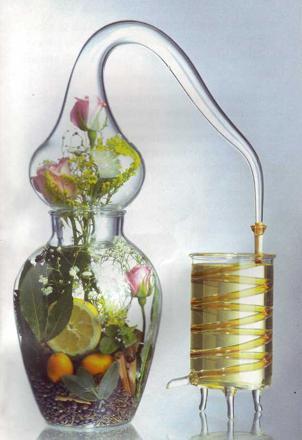 faire son huile essentielle