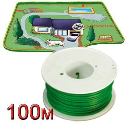 fil electrique chien
