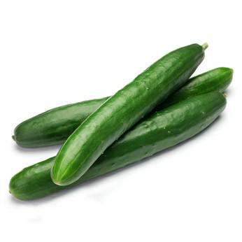 legume concombre