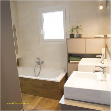 nettoyer salle de bain naturellement