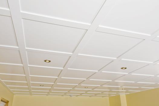 photo plafond suspendu